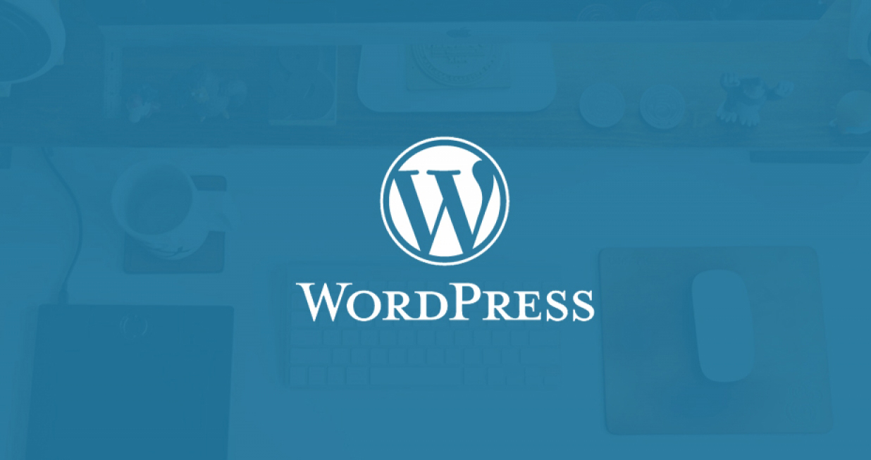 10 Reasons You Should Choose WordPress for Your Business Website