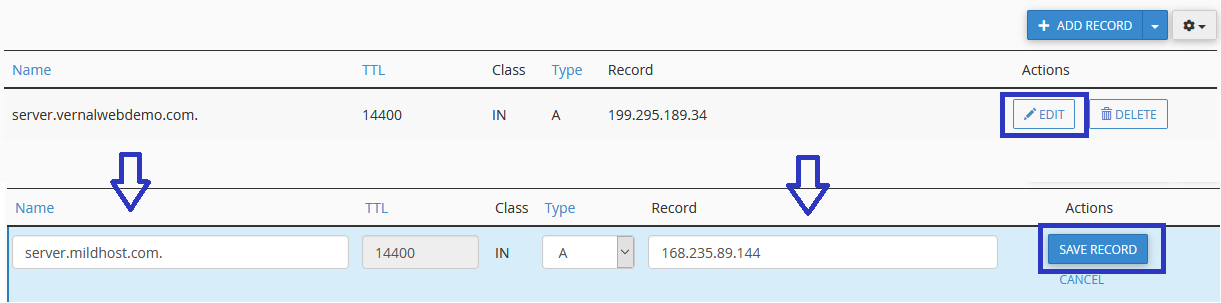 Edit DNS Record