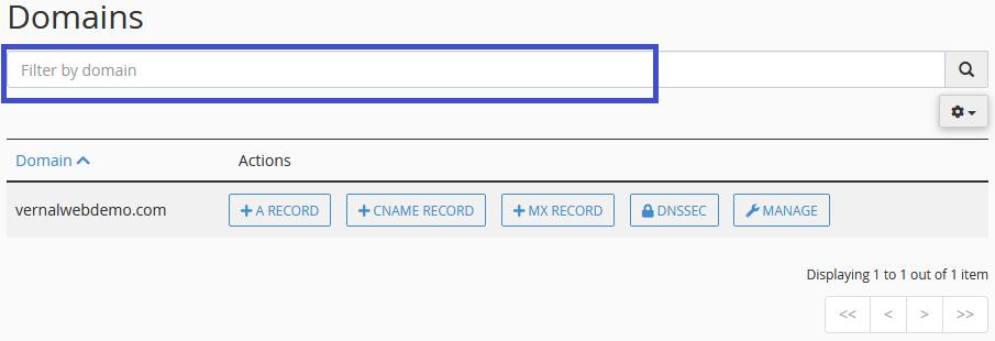 DNS Zone Editor Domain Filter