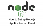 How to Set up Node.js Application in cPanel